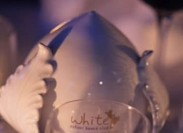 21 Marzo 2014// Just Cavalli - White on Tour