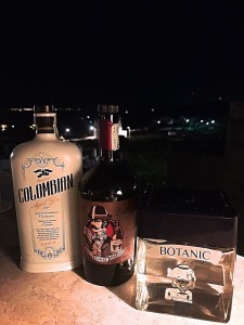 foto Gin 2